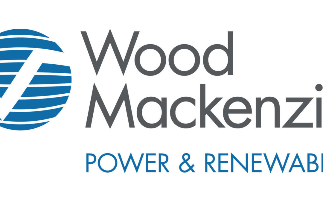 Wood MacKenzie Power & Renewables Conference | Fireside Chat with Eric Dresselhuys: Making Long-Duration Storage Viable